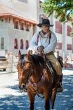 一匹棕色马的牛仔 库存照片