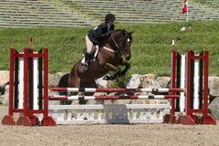 一匹棕色马的年轻女骑士 免版税库存照片