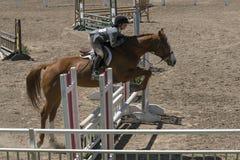 一匹棕色马的年轻女骑士 免版税库存图片