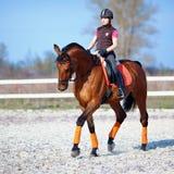 一匹红色马的女骑士 免版税库存照片