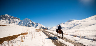 一匹马的一个人在山 库存图片