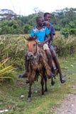 一匹马的三个年轻男孩在农村羰,海地 免版税库存照片