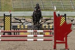 一匹黑马的年轻女骑士 库存照片