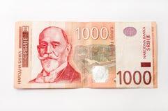 一千塞尔维亚丁那钞票  免版税图库摄影