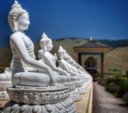 一千Buddhas, Arlee, MT Ewan庭院  免版税库存图片