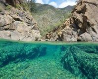 一半在水下在有岩石的一条河 库存照片