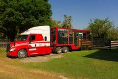 一半拖拉一辆巨大的马拖车在ocala 免版税库存照片
