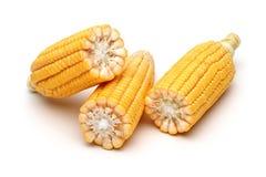 一半新鲜的玉米 库存图片
