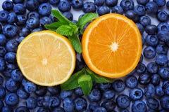 一半柠檬和桔子在蓝莓背景 蓝莓当纹理背景和黄色一半柠檬和桔子 库存照片