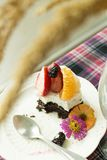一半水果的蛋糕 库存照片