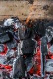 一半烧了煤炭关闭  免版税库存照片