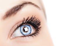 女性蓝眼睛 免版税库存图片
