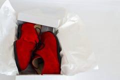 一双鞋在箱子的 免版税库存图片