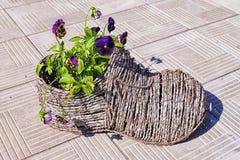 以一双鞋子的形式装饰罐有花蝴蝶花的 免版税库存图片