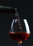 一口威士忌酒用白兰地酒 免版税库存照片