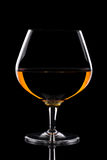 一口威士忌酒玻璃 库存照片