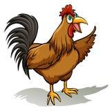 一只公鸡 免版税库存图片