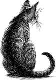 一只坐的小猫的剪影 库存例证
