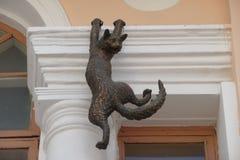 一只垂悬的猫的滑稽的看的雕塑 库存图片