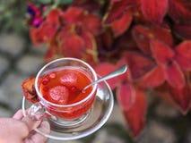 一只女孩` s手的一张顶视图有一个杯子的在自然本底的水果的茶 草莓Balsamico清凉茶 库存照片