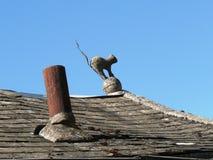 一只巫婆猫的雕象在屋顶的 免版税库存图片