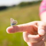 一只手的特写镜头有蝴蝶的对此 免版税库存图片