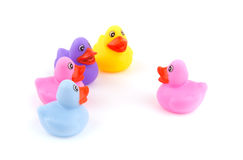 一只橡胶鸭子讲话在一个小组鸭子前面 库存照片