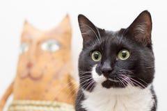 一只沉思的黑白猫的画象与一个猫玩偶的在背景中 图库摄影