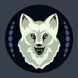 一只灰狼的头在黑背景的 向量例证