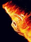 一只灼烧的手 库存照片