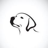 一只狗headLabrador猎犬的传染媒介在白色背景的 宠物 皇族释放例证