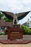 一只白的breasted海鹰的大雕象在Krabi镇, Thail 库存照片