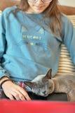一只睡觉英国猫在一位繁忙的主妇的手上 免版税库存图片