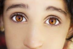 一只美丽的通透的神色女孩` s眼睛 关闭射击 库存图片