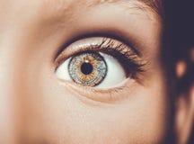 一只美丽的通透的神色眼睛 关闭射击 库存图片