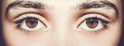 一只美丽的通透的神色眼睛 关闭射击 免版税库存照片
