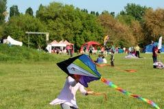一只美丽的风筝 库存图片