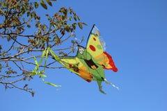 一只美丽的风筝 图库摄影