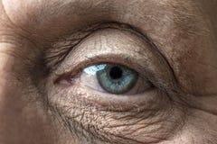 一只老眼睛 免版税库存图片