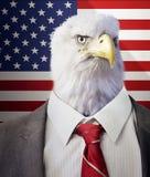 一只老鹰的头在商人的身体的在美国星条旗旗子前面 库存照片