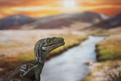一只肉食鸟的画象在一个侏罗纪世界的在日落 免版税库存照片