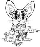 一只荧光的猫的例证与三个对的眼睛 猫用空间和行星装饰 皇族释放例证