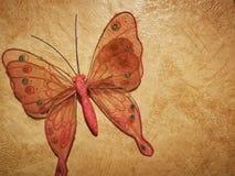 一只蝴蝶在客厅 库存照片
