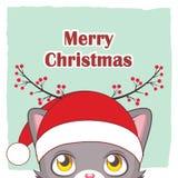 一只逗人喜爱的圣诞节猫的问候 免版税库存照片