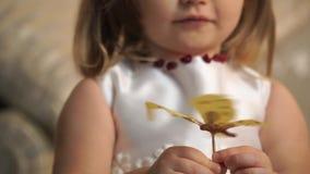 一只金黄蝴蝶的特写镜头对于儿童` s手 股票视频
