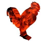 一只雄鸡的图象在白色背景的 库存图片