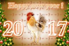 一只雄鸡的圣诞节例证海报和日历的2017年 库存图片