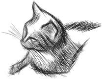 一只风格化被隔绝的猫的剪影 免版税库存图片
