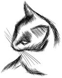 一只风格化被隔绝的猫的剪影 免版税库存照片
