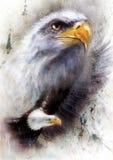 一只飞行老鹰的美丽的图画,在摘要被构造的b 库存图片